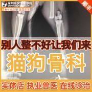 猫狗腿痛瘸腿治疗